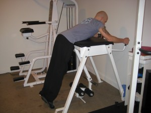 Reverse Hyperextension -2
